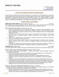 Military Resume Writers Fascinating Military To Civilian Resume Template Lovely Military To Civilian