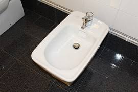 The bidet was invented in France in the the late 17th century by Christophe  des Rosiers It got its name from a French word meaning u0027ponyu0027 as it looked  like