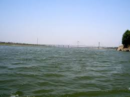 Image result for pics of yamuna nadi