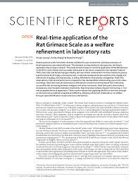 Real Time Application Of The Rat Grimace Scale As A Welfare