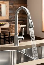 Professional Kitchen Faucet Best Blanco Meridian Semi Professional Kitchen Faucet Home Design