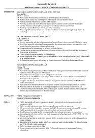 Senior Solutions Consultant Resume Samples Velvet Jobs