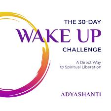 Adyashanti Birth Chart The 30 Day Wake Up Challenge A Direct Way To Spiritual