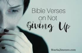 Bible Quotes About Not Giving Up Enchanting Don't Give Up