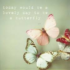 Butterfly Quotes New Butterfly Quotes Today Would Be A Lovely Day To Be A Butterfly