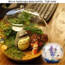wish large 20cm glass terrarium container bell jar miniature fairy garden lid cover just bottle