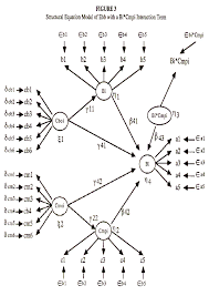 structural equation model of ebb with a bi cmpi interaction term
