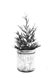Printable Christmas Tree Free Christmas Tree Printables