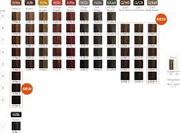 Directions Hair Color Chart