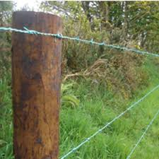 Barbed wire fence cattle Pasture Barbed Wire Fencing Frs Fencing Barbed Wire Fencing Frs Fencing