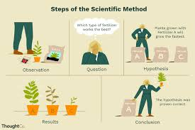 Example Of A Flow Chart Observation Scientific Method Definition And Examples