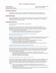 Finance Manager Resume Format Resume Template