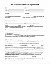 Bill Of Sale For A Horse Equine Bill Of Sale Pdf And Horse Bill Of Sale Word Document