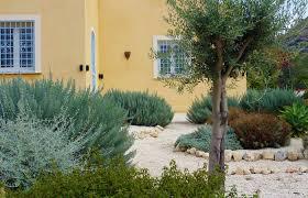 Small Picture Mediterranean Garden Design for Rural Garden in Sicily
