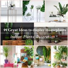 Indoor plants decoration makes your living space more comfortable,  breathable, and luxurious. See these 99 ideas on how to display houseplants  for ...