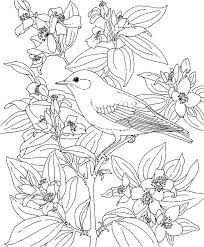 Small Picture 67 best Colouring Pages images on Pinterest Coloring books
