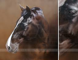 horse portraits in oils on canvas