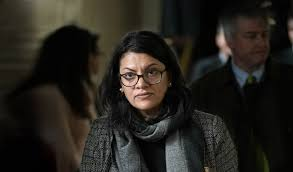 Image result for tlaib