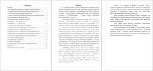 Президент РФ конституционный статус и политическая практика  президент рф конституционный статус и политическая практика курсовая по конституционному праву россии