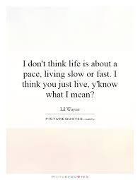 Just Live Life Quotes Fascinating Download Just Live Life Quotes Ryancowan Quotes