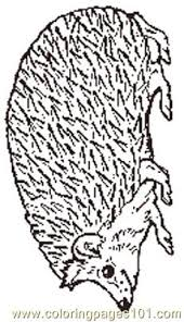 Small Picture The Mitten Mural Hedgehog Coloring Page Coloring Page Free