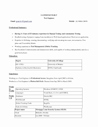 Download Resume Format In Word 2007 Lovely Resume Template