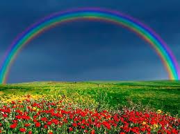 rainbow wallpaper rainbow wallpaper hd nature