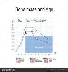 Bone Mass Male Female Age Osteoporosis Chart Healthy