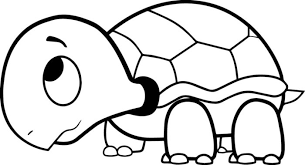 Small Picture Turtle Coloring Page Turtle Coloring Pages For Kids With
