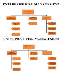 Risk Management Org Chart Risk Management Chart Template 6 Free Sample Example