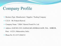 format of presentation of project project report format template business
