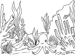 Small Picture Trendy Ocean Coloring Pages Ocean Coloring Pages Image 14 Ppinewsco