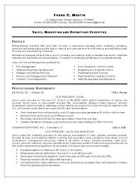 Executive Sales Resume Samples Functional Resume Template Sales ...