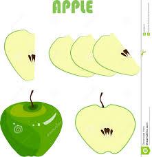 Pomme Verte Racines Brunes Tranches Sur Le Fond Blanc Dessin De