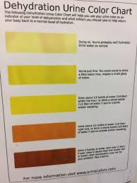 Dehydration Pee Color Chart Www Bedowntowndaytona Com