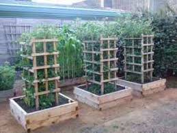 15-diy-tomato-cages