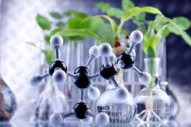 """Résultat de recherche d'images pour """"extraction chimie green"""""""