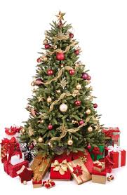 Výsledek obrázku pro vánoční obrázek