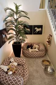 Dream room furniture Kid Dogsdreamroom Bedroom Ideas 10 Rooms That Are Dogs Dream