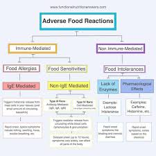 Food Sensitivity Testing Which Test Is Best Functional