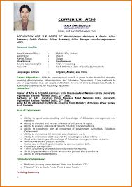Resume Job Application Examples Lazine Net