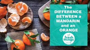 Mandarin Tangerines Fresh Things The Difference Between And Mandarin And An Orange