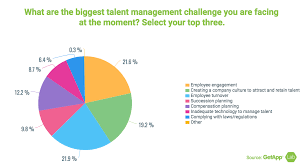 Abf Org Chart Talent Management Strategy Report Focus On Teams And
