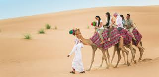 Exciting experience in Dubai with Camel Desert Safari | Exilim Tours