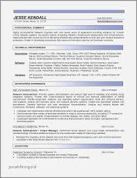 Resume Summary Examples For Network Engineer Unique Resume Puter