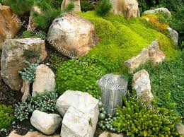 Small Picture Rock Garden Designs Front Yard Markcastroco