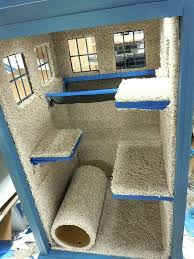 cat house plans house for cats heated cat house diy
