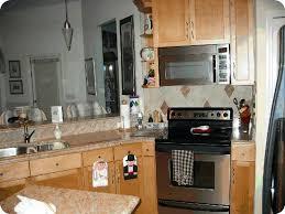 glamorous kitchen cabinets tampa fl at