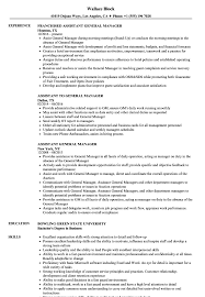Assistant General Manager Resume Assistant General Manager Resume Samples Velvet Jobs 1