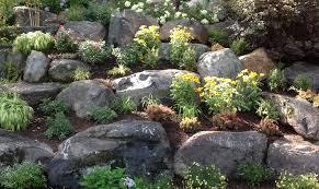 ... Rock Garden ...